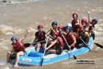 Adventure Whitewater Rafting in Sabah, Borneo