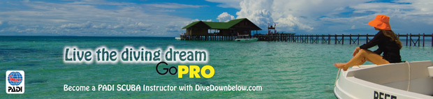 Become a SCUBA Instructor with Downbelow