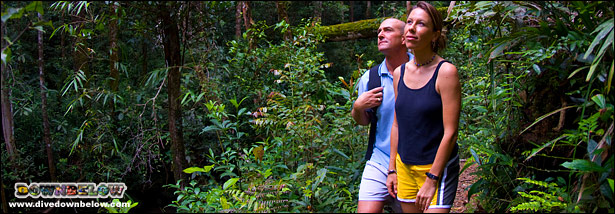 Richard & Jo Trekking the Jungles of Gaya Island