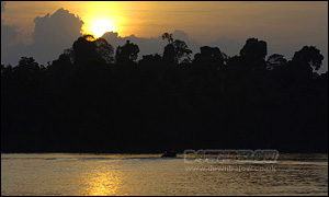 Sunset over the Kinabatangan River in Sabah