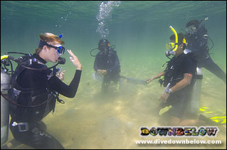 Get your diving qualification in the TAR Park, Kota Kinabalu, Sabah