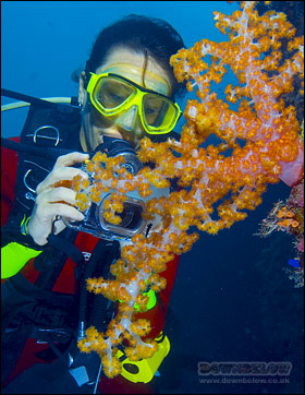 The PADI Digital Underwater Photographer Certification