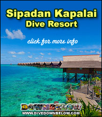Sipadan mabul kapalai diving sabah dive downbelow - Kapalai dive resort price ...