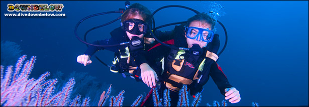 PADI Bubble Maker is a great way to involve kids in the marine world