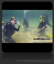Learn to Dive - PADI SCUBA Dive Courses in Sabah, Borneo
