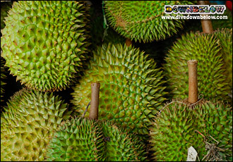 Delectable Durian named the King of Fruits. Most western palates need a couple of tries before acquiring the delicious taste