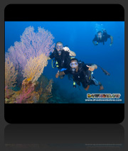 Learn to dive Kota Kinabalu with our PADI SCUBA Dive Courses in Sabah, Borneo