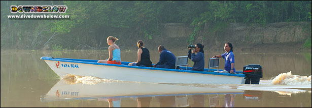Early morning cruising the Kinabatangan River in search of wildlife