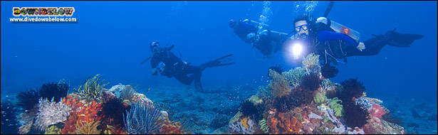 Go where only Master Scuba Divers can