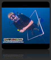 PADI Advanced Open Water Diver Course with Downbelow