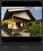 Book Pom Pom Island Resort Accommodation