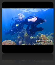 PADI Speciality Courses with Downbelow
