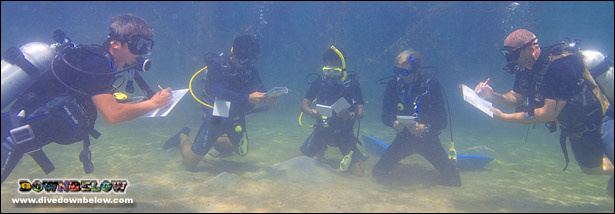 Underwater Skills Development