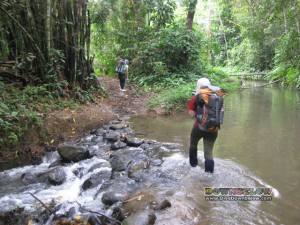 One of the small river crossings on the Salt Trail, jungle trekking the Crocker Range