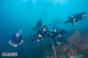 Jerudong International School dives