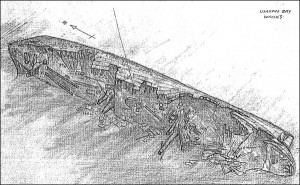 The wreck simply known as the Usukan Bay Wreck - source of the sketch unknown