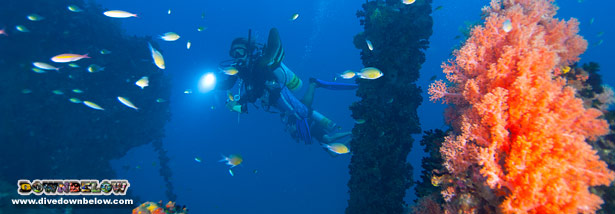 Diving the Usukan Bay Wrecks in Sabah, Borneo - Japanese Ships sunk during WW2