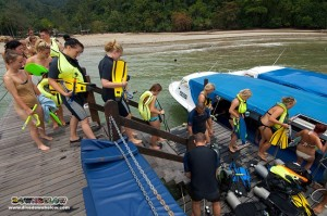 The group departs for a Skin Diving session to see the coral reefs up close and in person