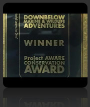 Downbelow Winners of the PADI Project AWARE Conservation Award 2010
