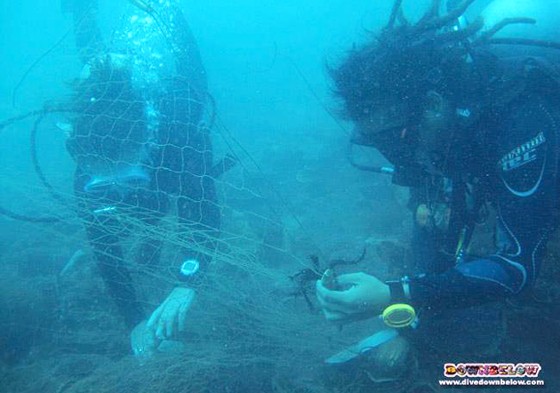 Downbelow's Instructor Roy (tries to) impress Pro Intern Sara by rescuing a feather star