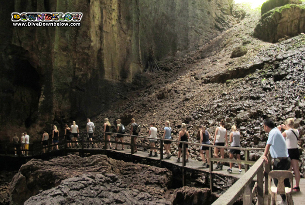 The Gomantong Caves in Sabah is a huge system of caves known for the nests of swiftlets used in Bird Nest Soup