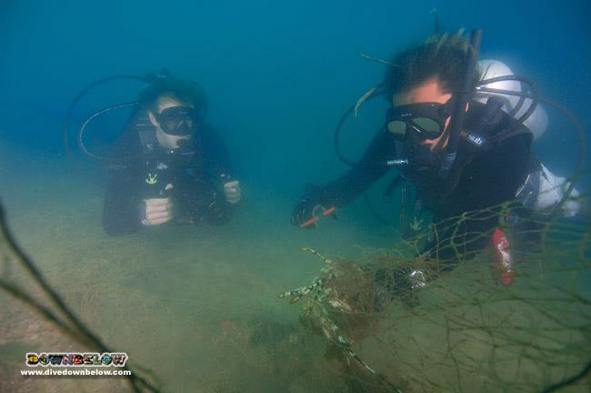 Downbelow and interns dislodges illegal net from the marine park in Kota Kinabalu, Sabah