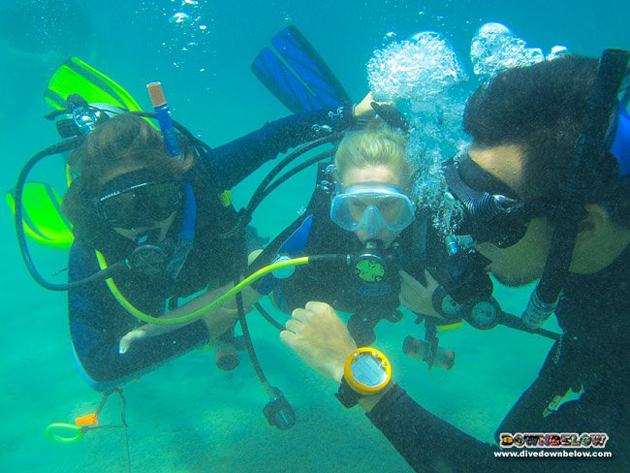 During the May IDC at Downbelow's PADI 5 Star IDC Dive Centre