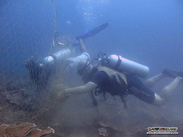 PADI Course Director Richard Swann and one of the net removal crew cutting the net down to size