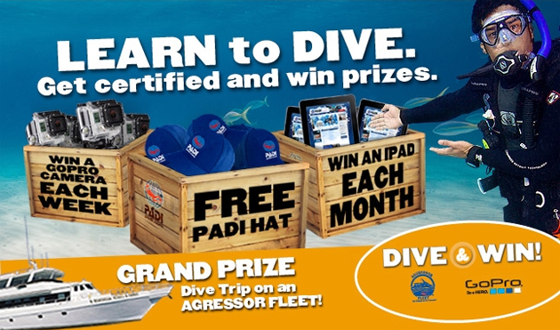 Dive and Win Stuff. Lots of Stuff.