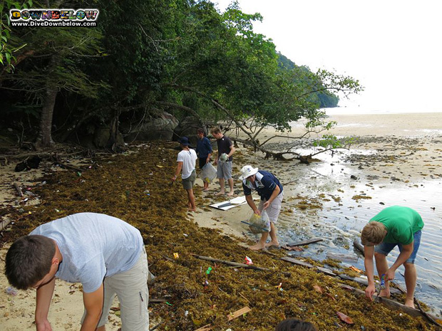 beach-cleanup-borneo