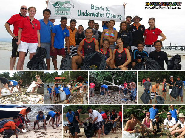 downbelow completes conservation program in borneo