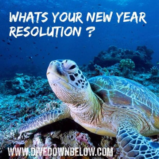 Happy New Year 2014 - time to go diving!