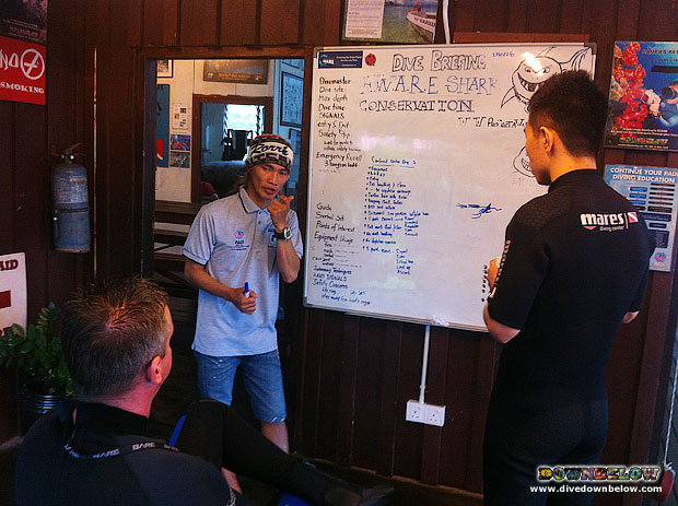 Open Water Briefing