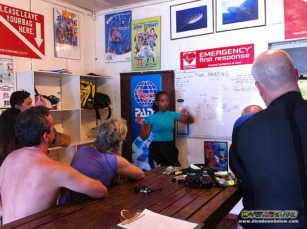 Divemaster intern gives briefing to Fun Divers