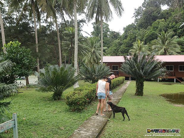 Newly-wed Taking A Romantic Stroll in Gaya Island