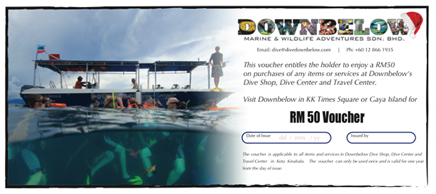 borneo, sabah, kota kinabalu, travel centre, 5 star idc dive centre, dive shop, promotion, voucher, christmas, travel, adventure, holiday packages, vacation itinerary