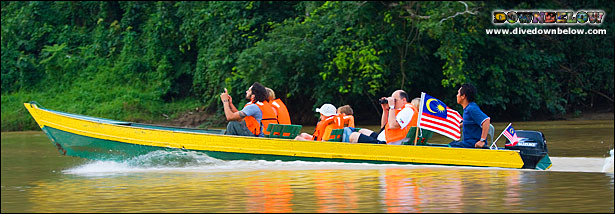 sabah travel centre, downbelow marine and wildlife adventure program, sandakan, borneo, kota kinabalu, malaysia, kinabatangan river, boutique wildlife adventure program, orang utan, river cruise, explore, holiday package, wildlife safari, gomantong caves, sepilok orang utan rehabilitation centre,