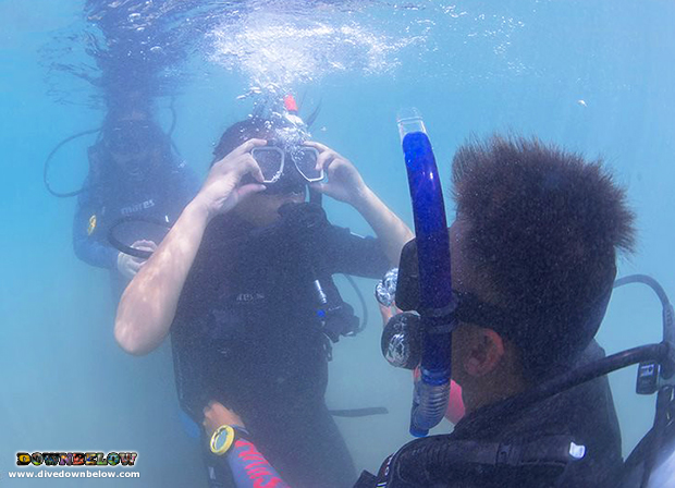 padi discover scuba diving program, try dive, work experience, sabah, kota kinabalu, tourism industry, borneo, travel and tours, unique education, practical experience