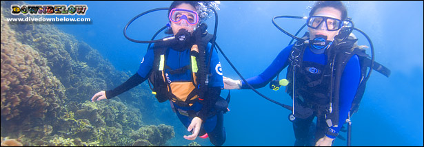 First time divers are, at all times, escorted by a PADI Diving Professional