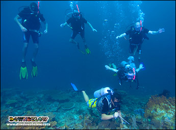 At Downbelow we dive every day so you can practice your skills