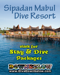 Pulau tiga survivor island resort scuba diving dive sites in sabah diving sabah dive downbelow - Sipadan dive centre ...