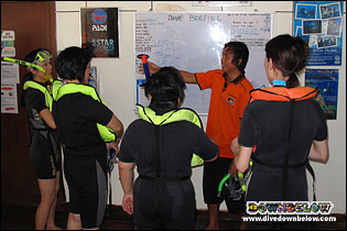 Snorkelers are briefed before heading out