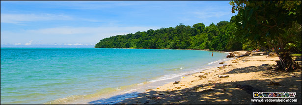 The sweeping beach with azure waters fronting Pulau Tiga - Survivor Island
