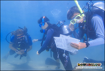 As a PADI IDC Staff Instructor you are involved in conducting, organizing and assisting the IDC and Instructor Specialty courses