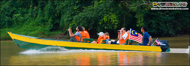 Visitors to the Kinabatangan Cruising for Wildlife in a Yellow Boat