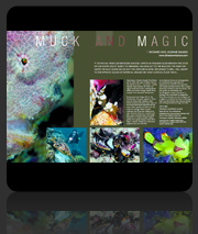 Publication Dive The Blue - Muck & Magic Article & Photos