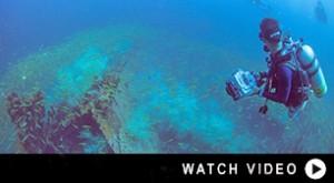 http://www.divedownbelow.com/about-downbelow/video-collection/ww2-japanese-wrecks-usukan-bay-december-2015/